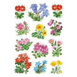 Herma 3582 Sticker DECOR Gebirgsblumen