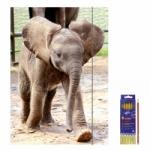 """Zeichenmappe """"Elefant"""" für DIN A3 inkl. 6er Pack Buntstifte + Bleistift"""