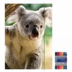 """Zeichenmappe """"Koala"""" für DIN A4 inkl. 10er Pack Doppelfasermaler"""