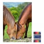 """Zeichenmappe """"Lovely Horses"""" für A4 inkl. 10er Pack Doppelfasermaler"""