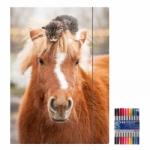 """Zeichenmappe """"Pferd"""" für A4 inkl. 10er Pack Doppelfasermaler"""