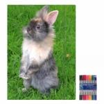 """Zeichenmappe """"Kaninchen"""" für A4 inkl. 10er Pack Doppelfasermaler"""