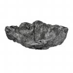 Wurzelholz Schale Rustika länglich blackwashed ca. 40 x 30 x 9 cm