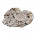 Wurzelholz Schale Rustika groß stonewashed ca. 40 x 40 x 12 cm