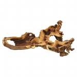 Wurzelholz Knochenschale natur ca. 40 x 20 x 10 cm